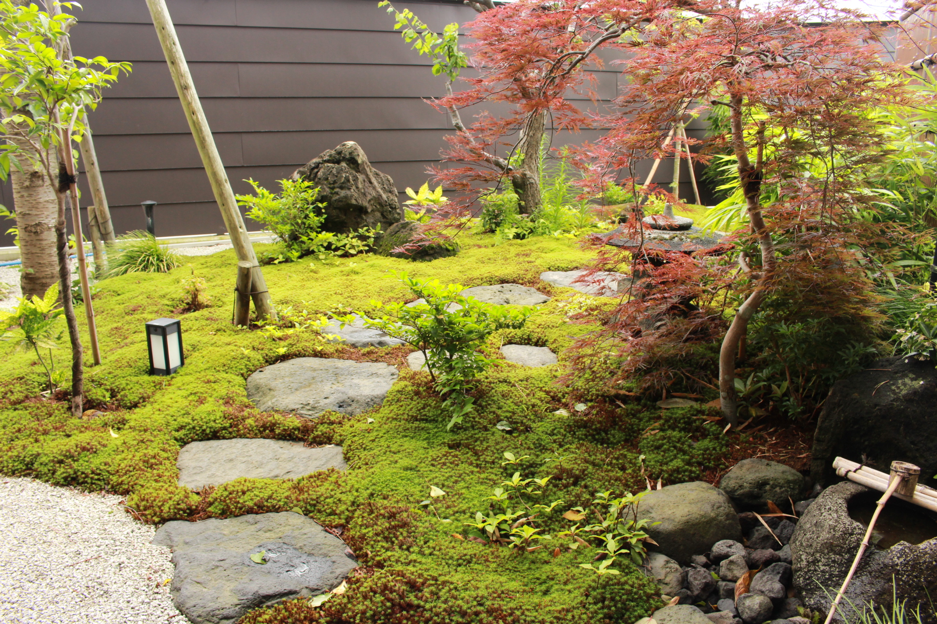 和室の窓から見える苔の庭では季節ごとに違った景色を楽しめます。